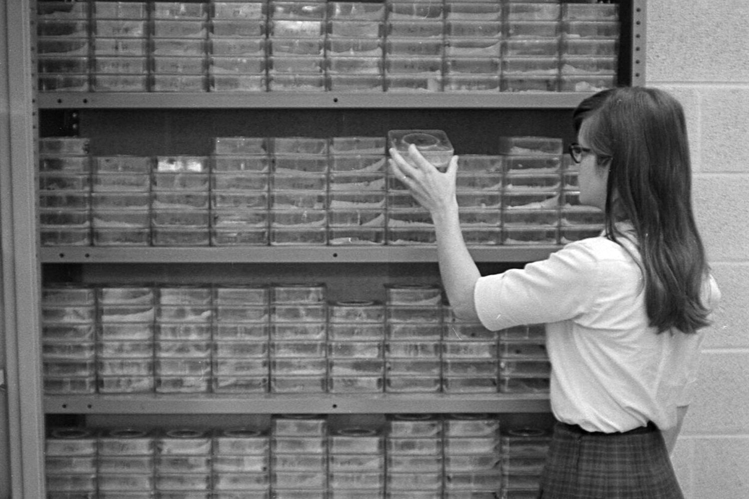 A graduate student peruses books in a biology lab in 1967.