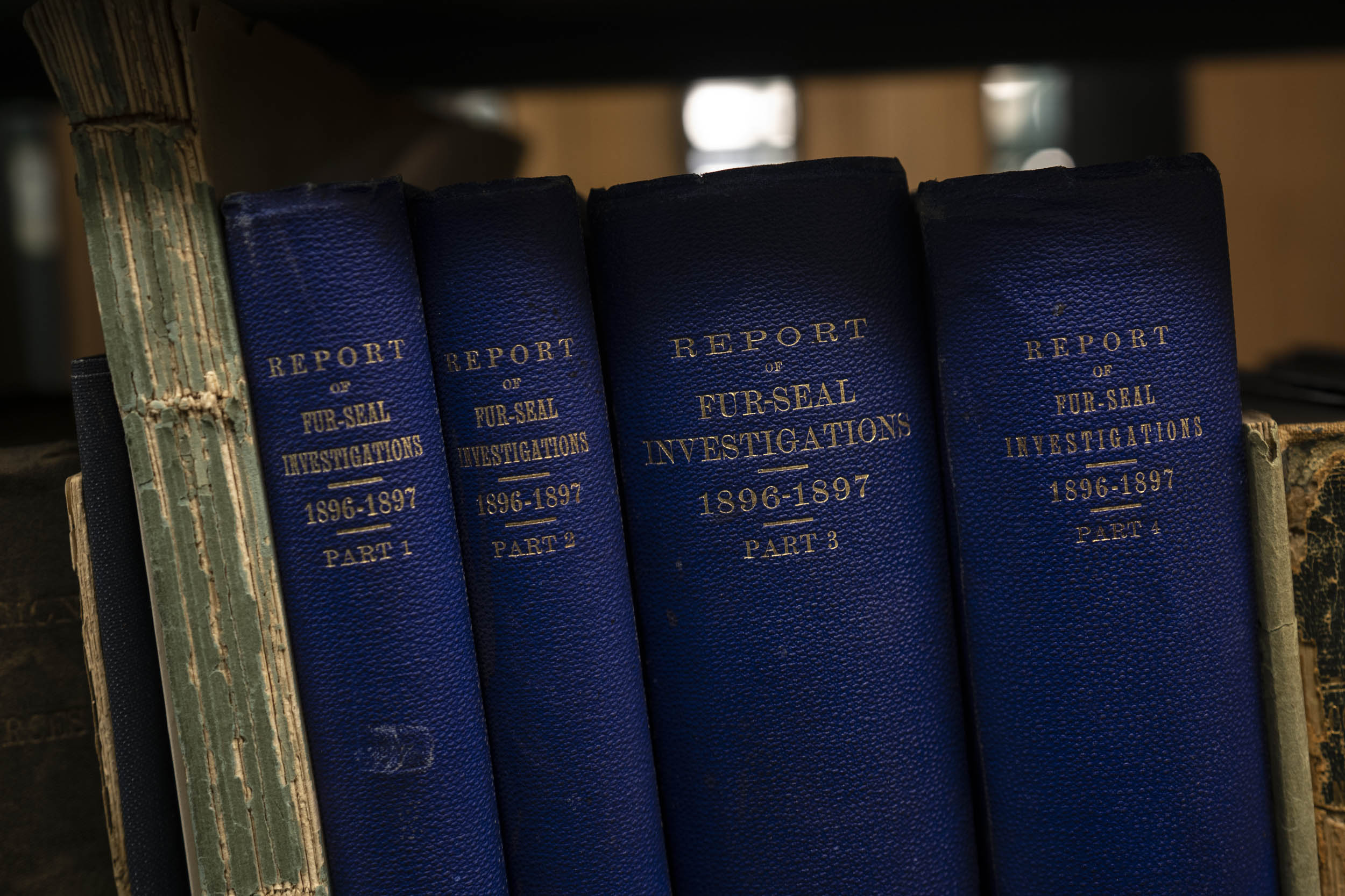 Books are being relocated either to Clemons Library or the Ivy Stacks, where these 19th-century reports will go.