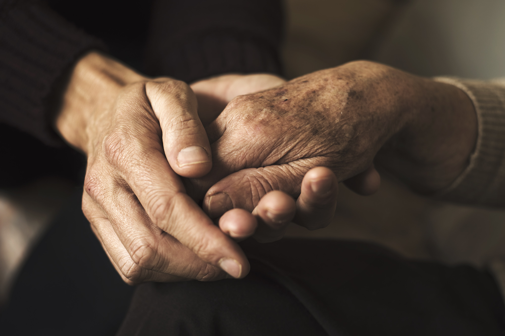 Cholesterol Drives Alzheimer's Plaque Formation, Study Finds