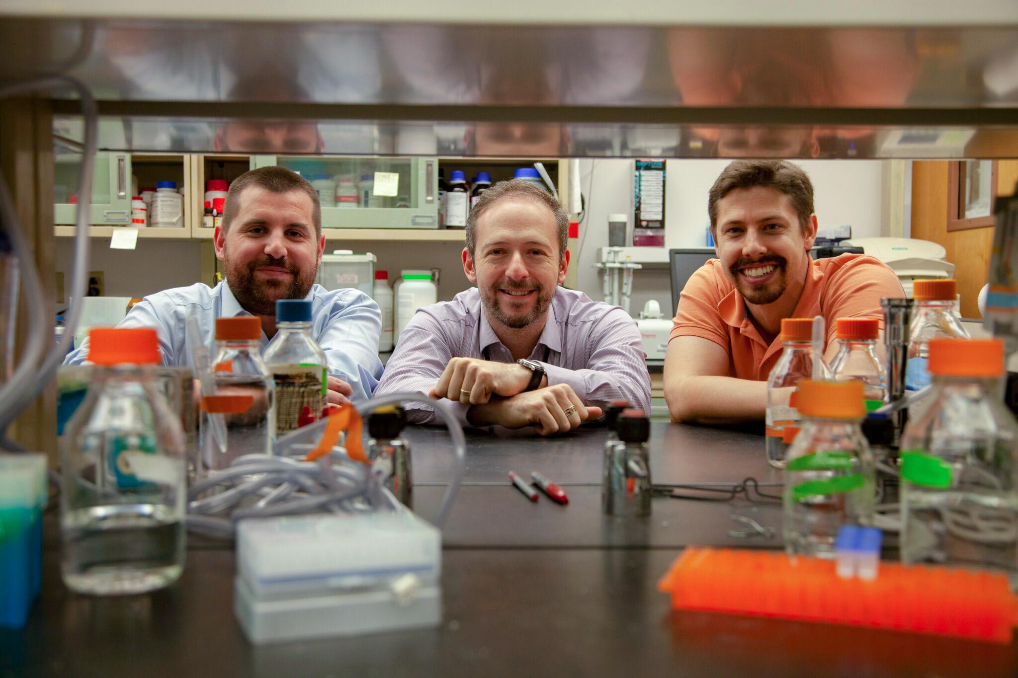 From left, researchers Antoine Louveau, Jonathan Kipnis and Sandro da Mesquita. The Kipnis lab found that links between the brain and lymphatic systems may contribute to cognitive disease.