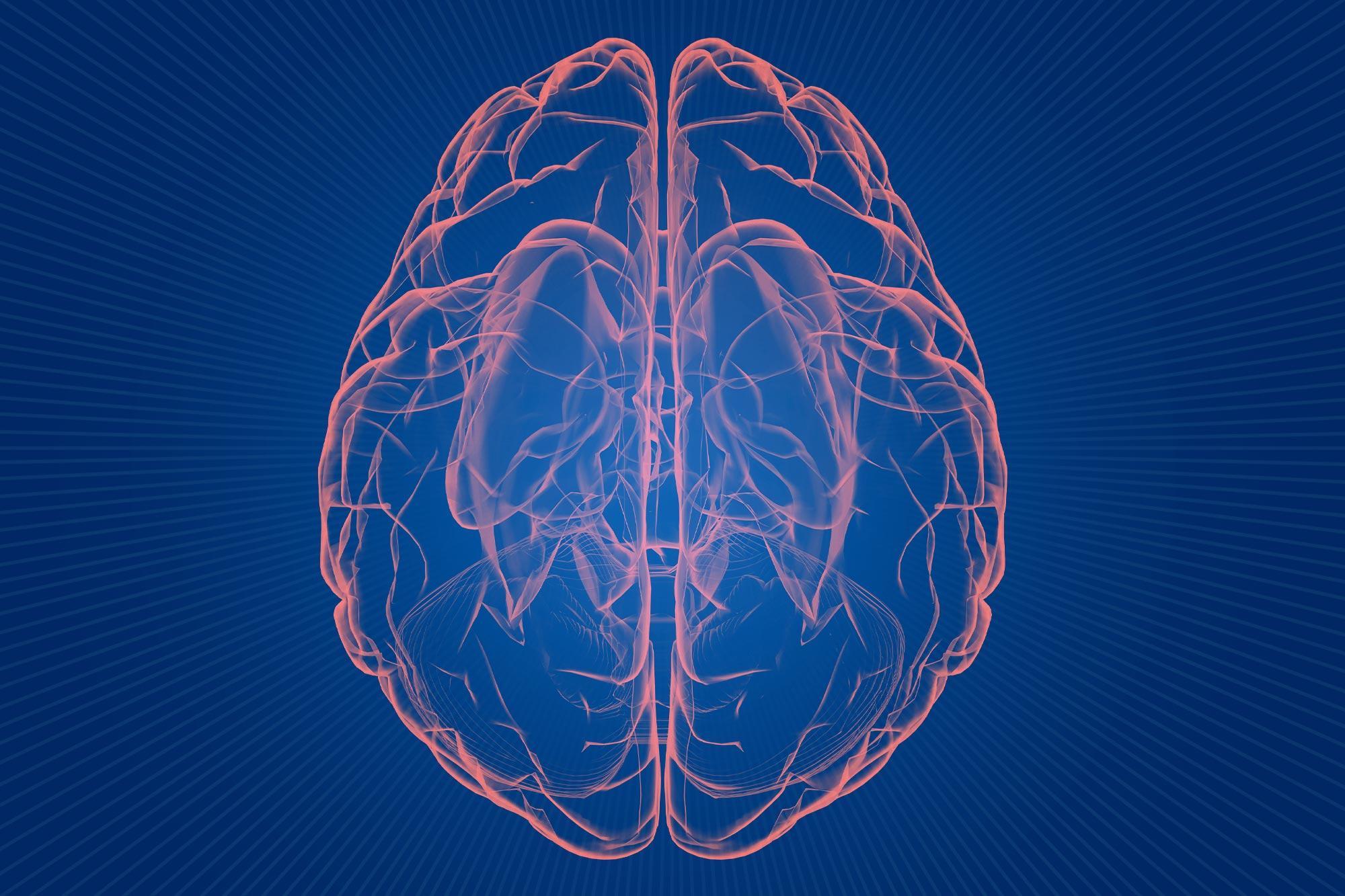 UVA Reveals True Nature of Cells Blamed in Alzheimer's
