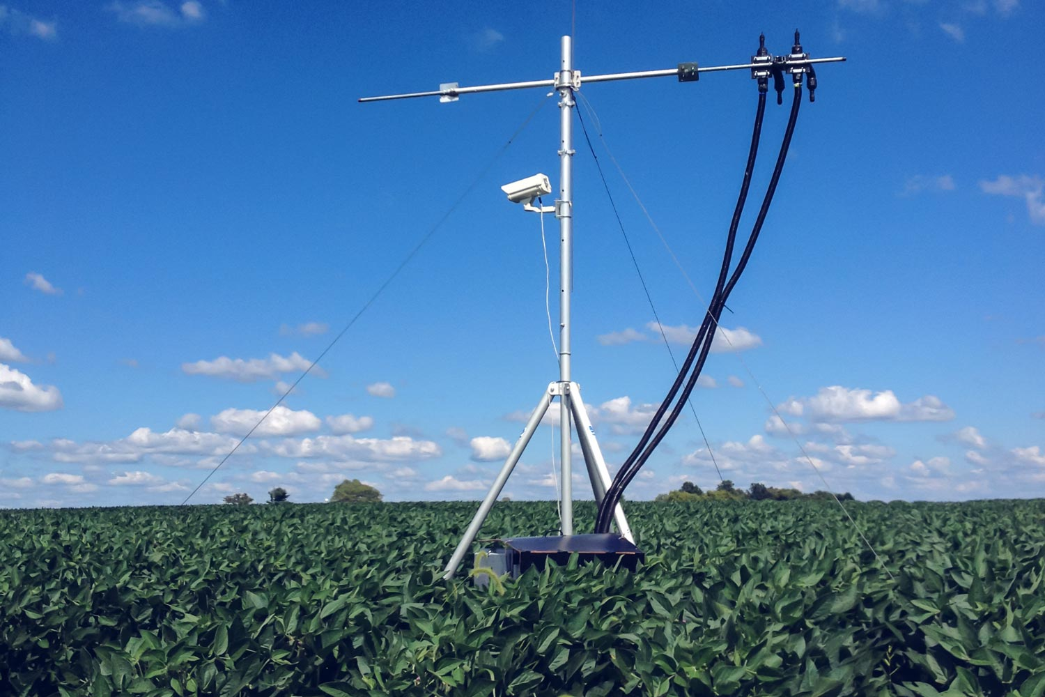 The research team used ground-mounted sensors to monitor photosynthesis in an Illinois soybean field, but the same methods could be deployed on satellites.