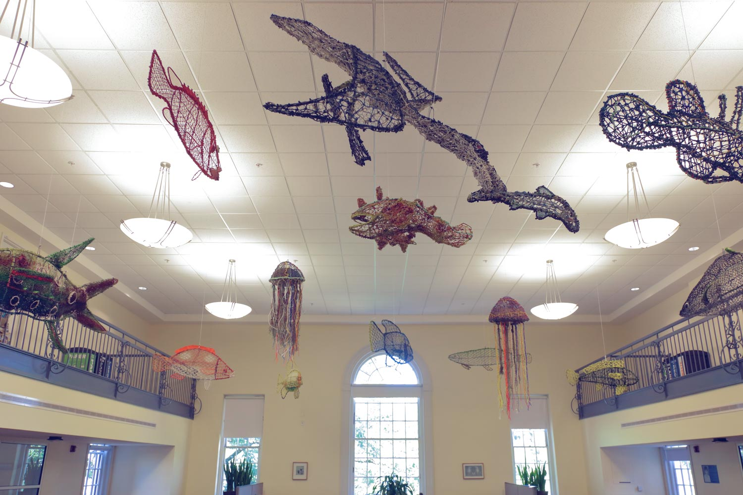 "Sculptures made from ""ghost nets"" hang from the ceiling of Brown Library. (Photo by Tom Cogill)"