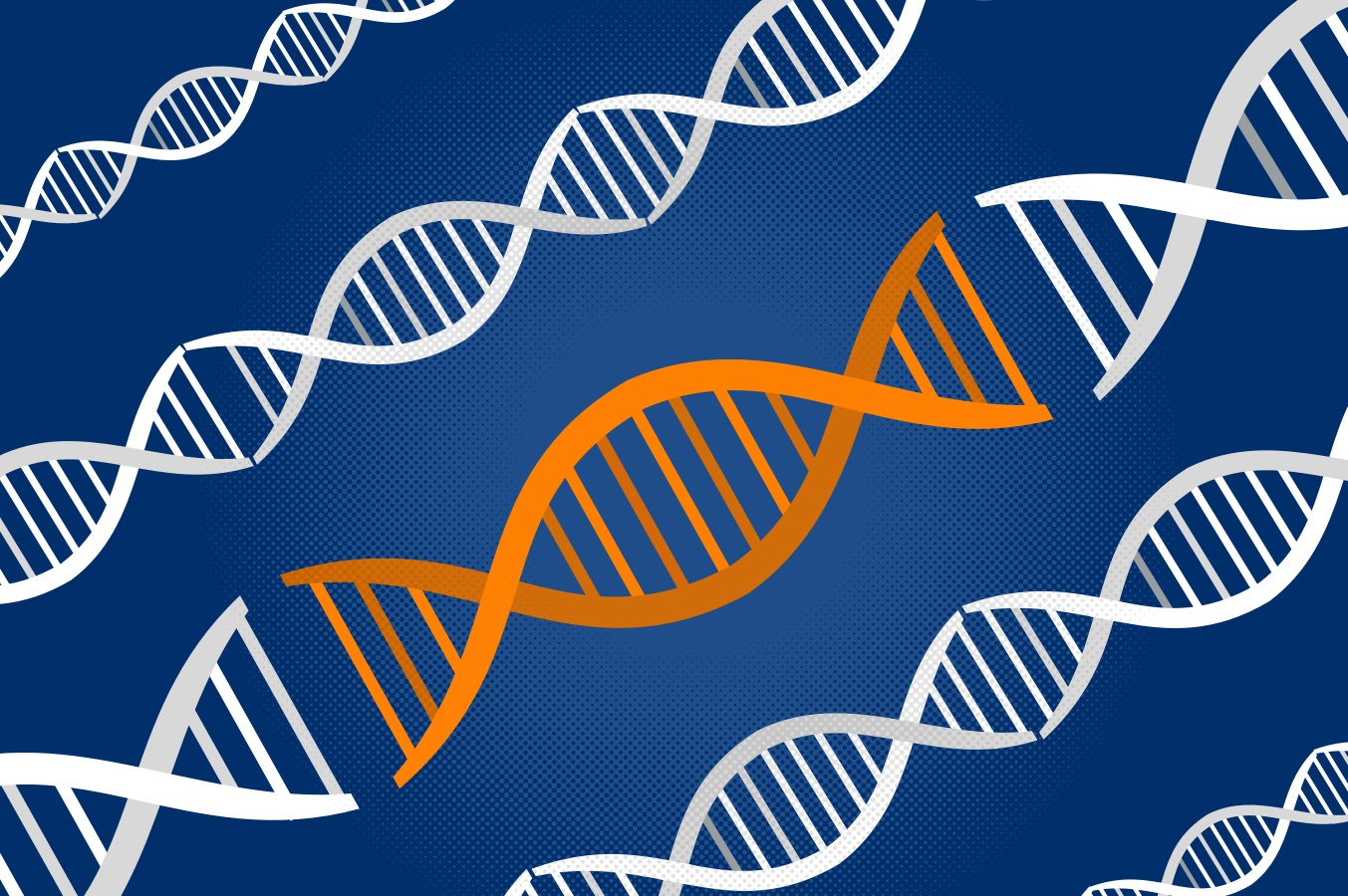 UVA Team Finds Way to View Genes Inside Living Cells, in Real Time