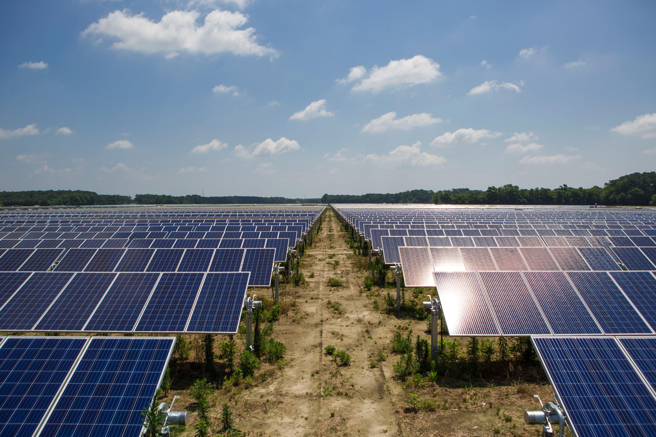 Among many efforts to expand its use of green energy, the University has signed long-term contracts with Dominion Energy to purchase the output of two solar farms.