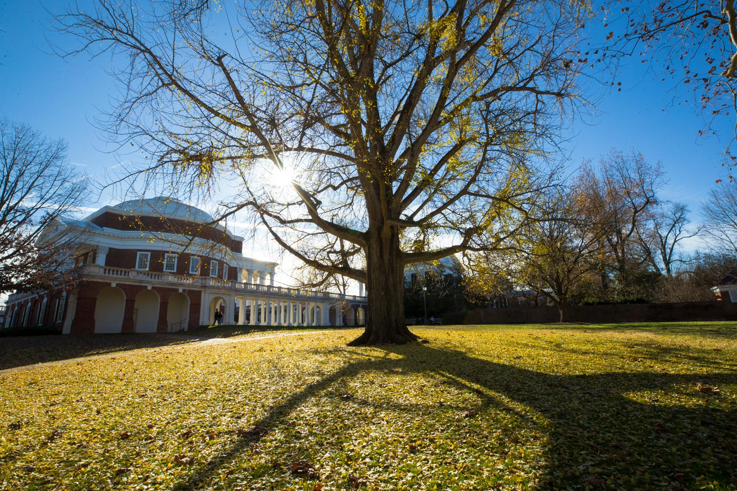 UVA Board of Visitors Approves Tuition Rates for 2019-20