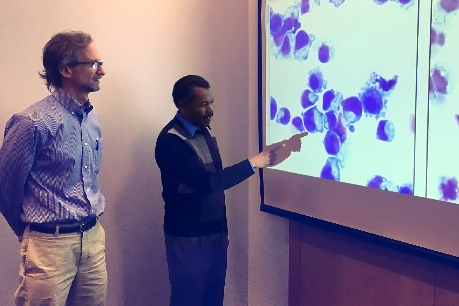 """Dr. Adam Goldfarb, left, and Kamal Elagib examine cells before and after they manipulated the """"master switch"""" they discovered."""