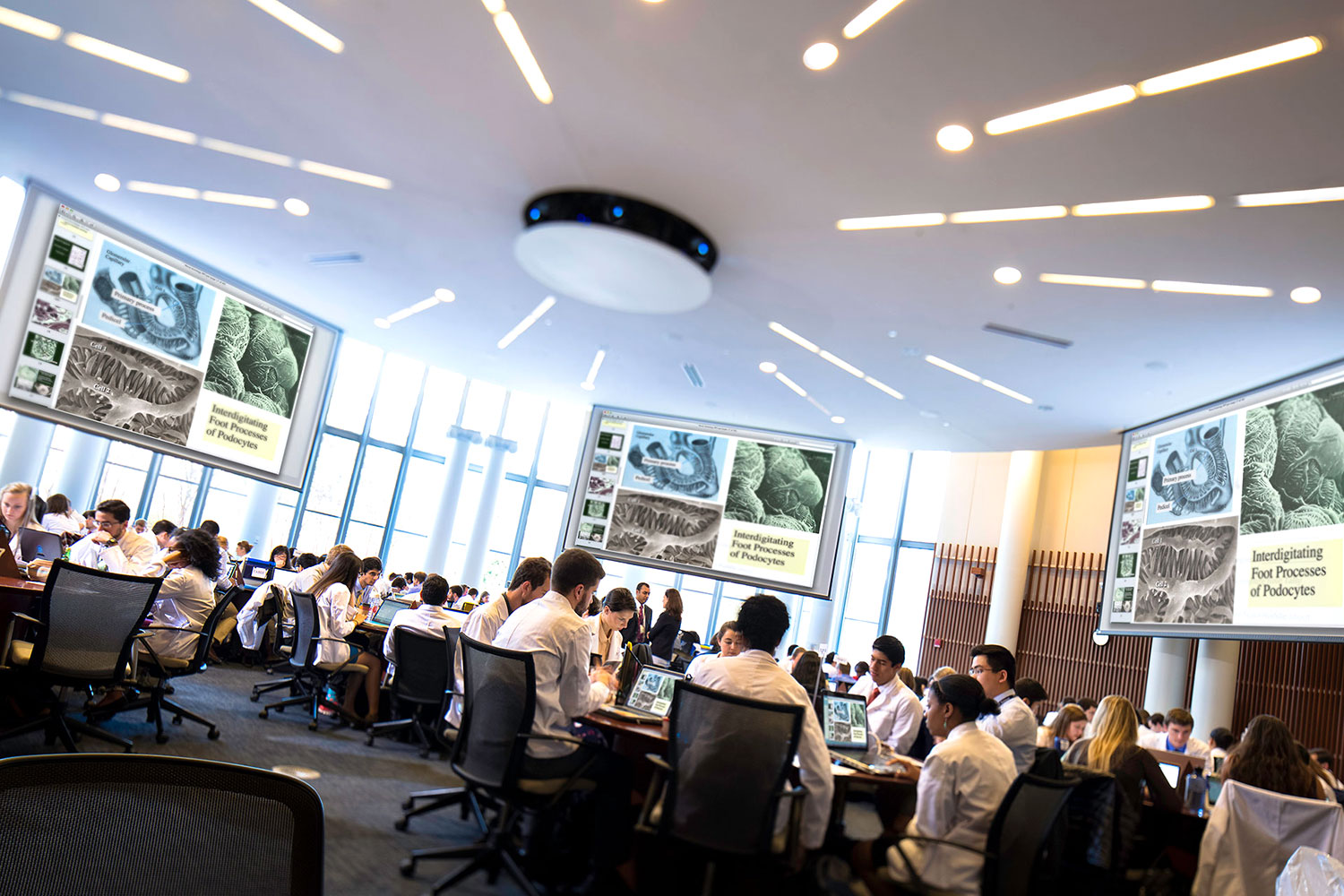 UVA School of Medicine students at work in the Claude Moore Medical Education Building. (UVA Health System photo)