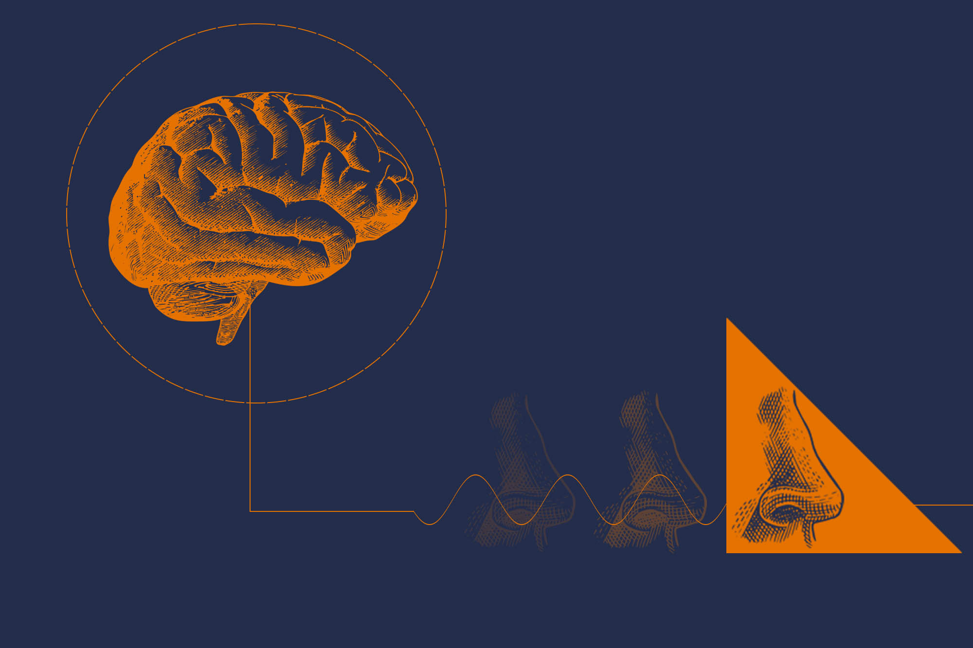 Q&A: What Is 'Interoception,' and Why Are Neuroscientists So Fascinated by It?