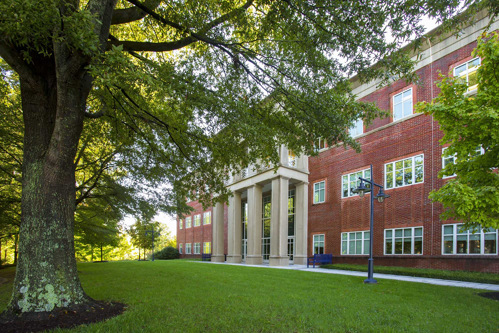 Ivy Foundation Backs 14 COVID Translational Research Projects