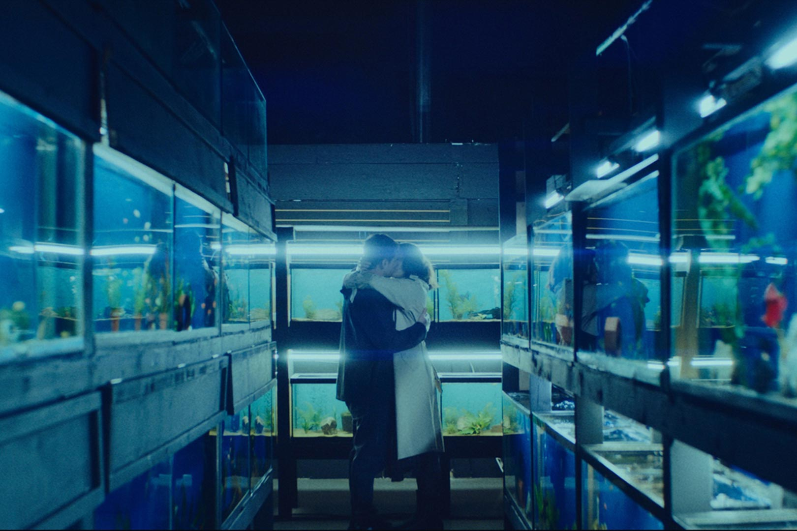 """The upcoming film """"Little Fish,"""" based on a story by Aja Gabel, considers: without shared memories, what is the nature of love? (Courtesy of IFC Films. An IFC Films release.)"""