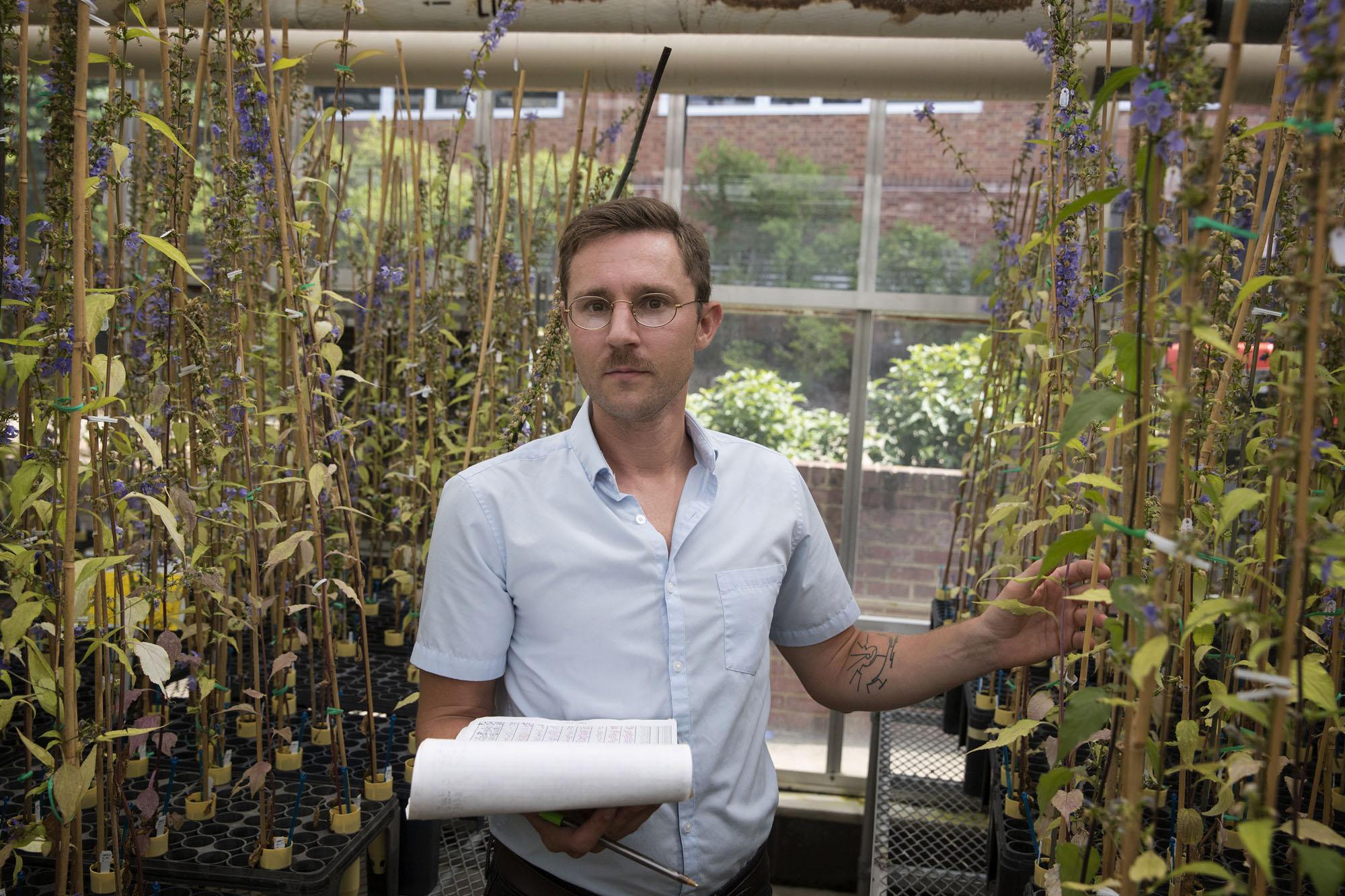 Matt Koski studies the relationships between plants and their pollinators.
