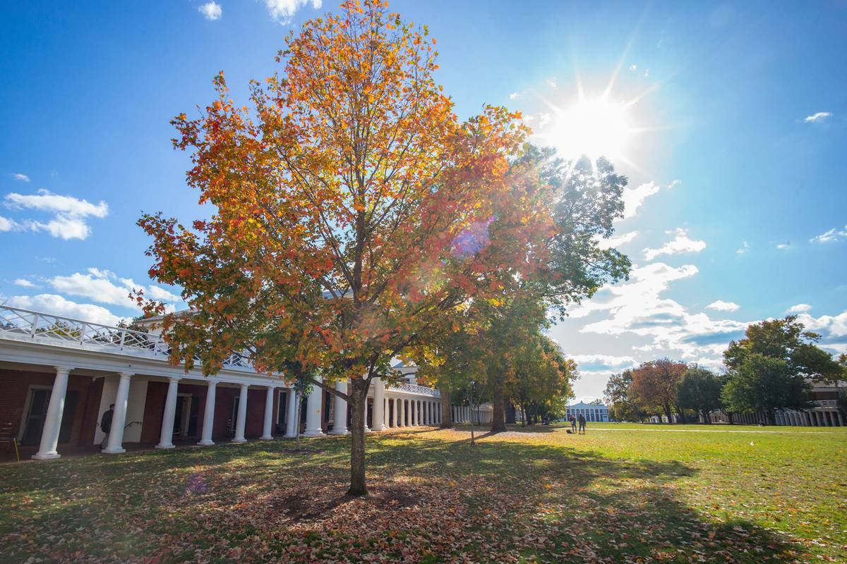 UVA, W&M to Partner on 10-Year Goal of Achieving Carbon Neutrality