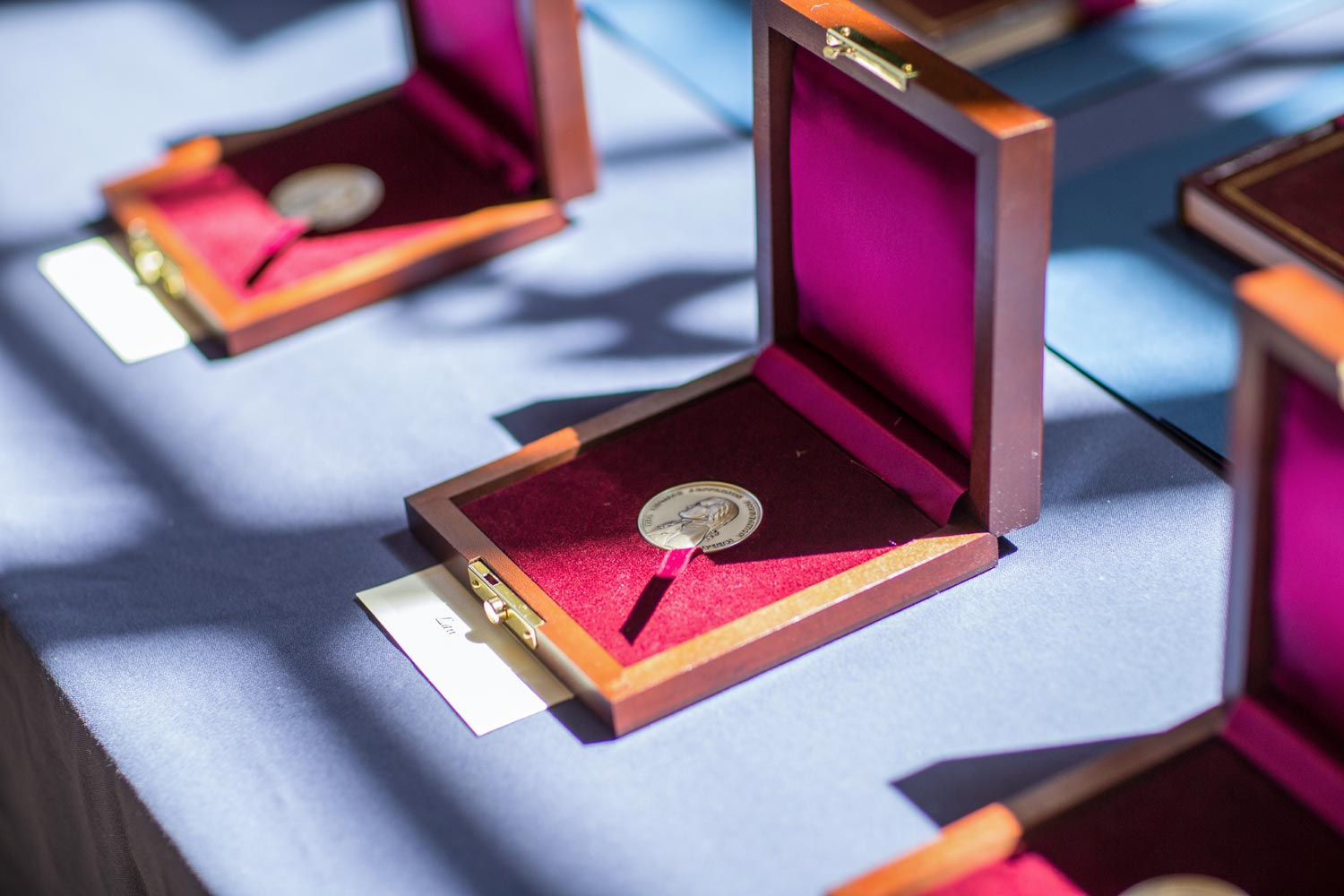 The Thomas Jefferson Foundation Medals will be awarded during Founder's Day celebrations in April. (Photo by Sanjay Suchak, University Communications)