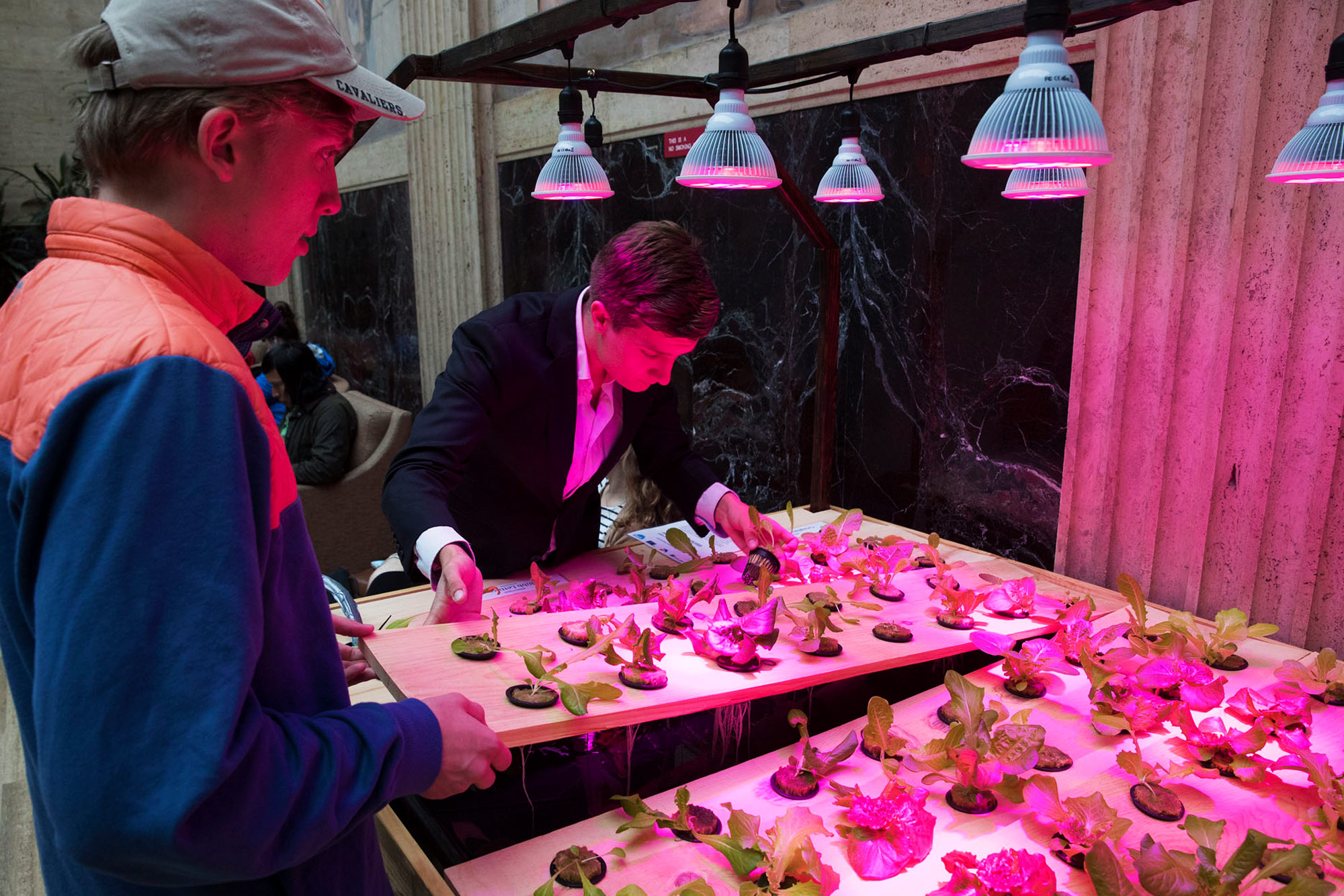 Alexander Olesen, founder of Babylon Micro-Farms, hopes that his hydroponic systems will soon be put to use in UVA dining halls and low-income areas. (Photo by Dan Addison, University Communications)
