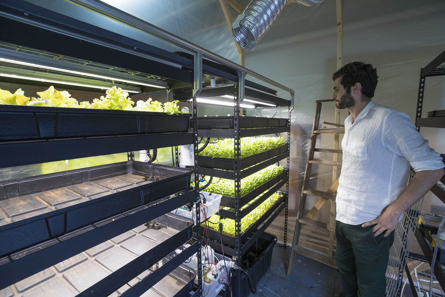 Babylon Micro-Farms sales director Will Graham surveys hydroponic systems in their studio off Preston Avenue in downtown Charlottesville.