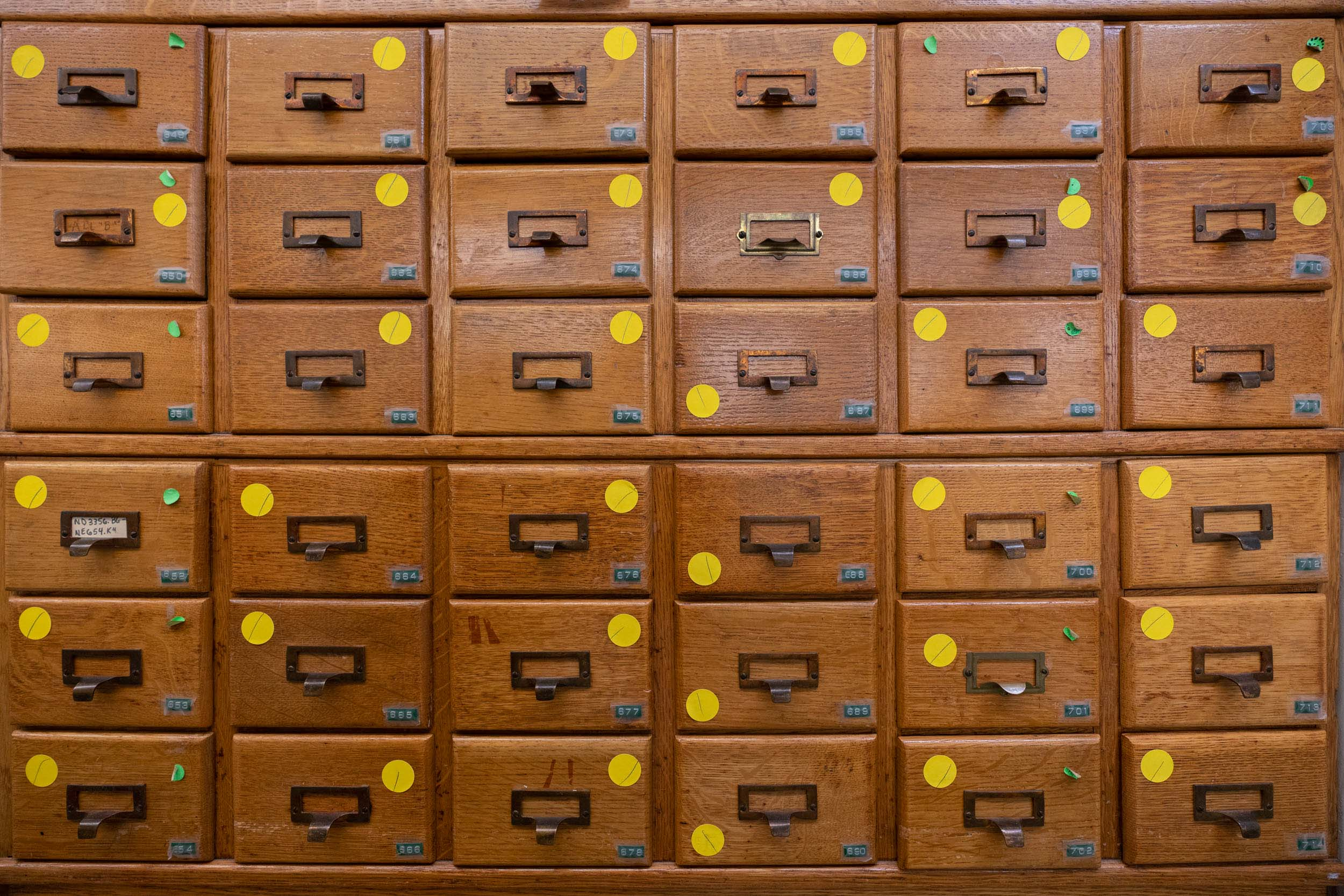 Wooden drawers contain the card catalog to be preserved.