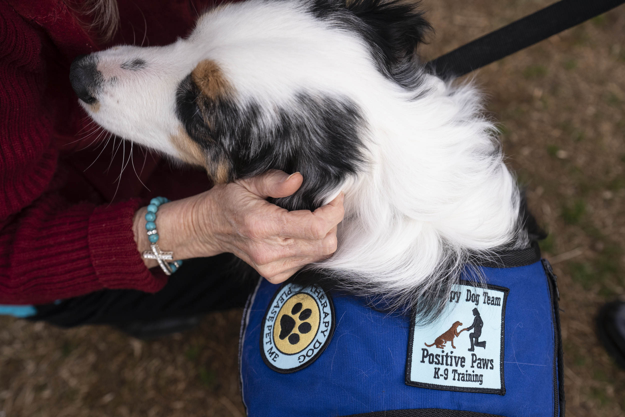 "Cooper was certified as a therapy dog earlier this month. His therapy vest encourages people to ""please pet me."""
