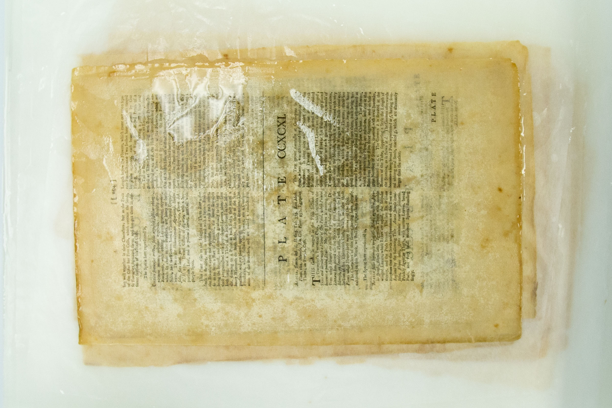 The hardier text pages are stacked and soaked together to remove impurities.