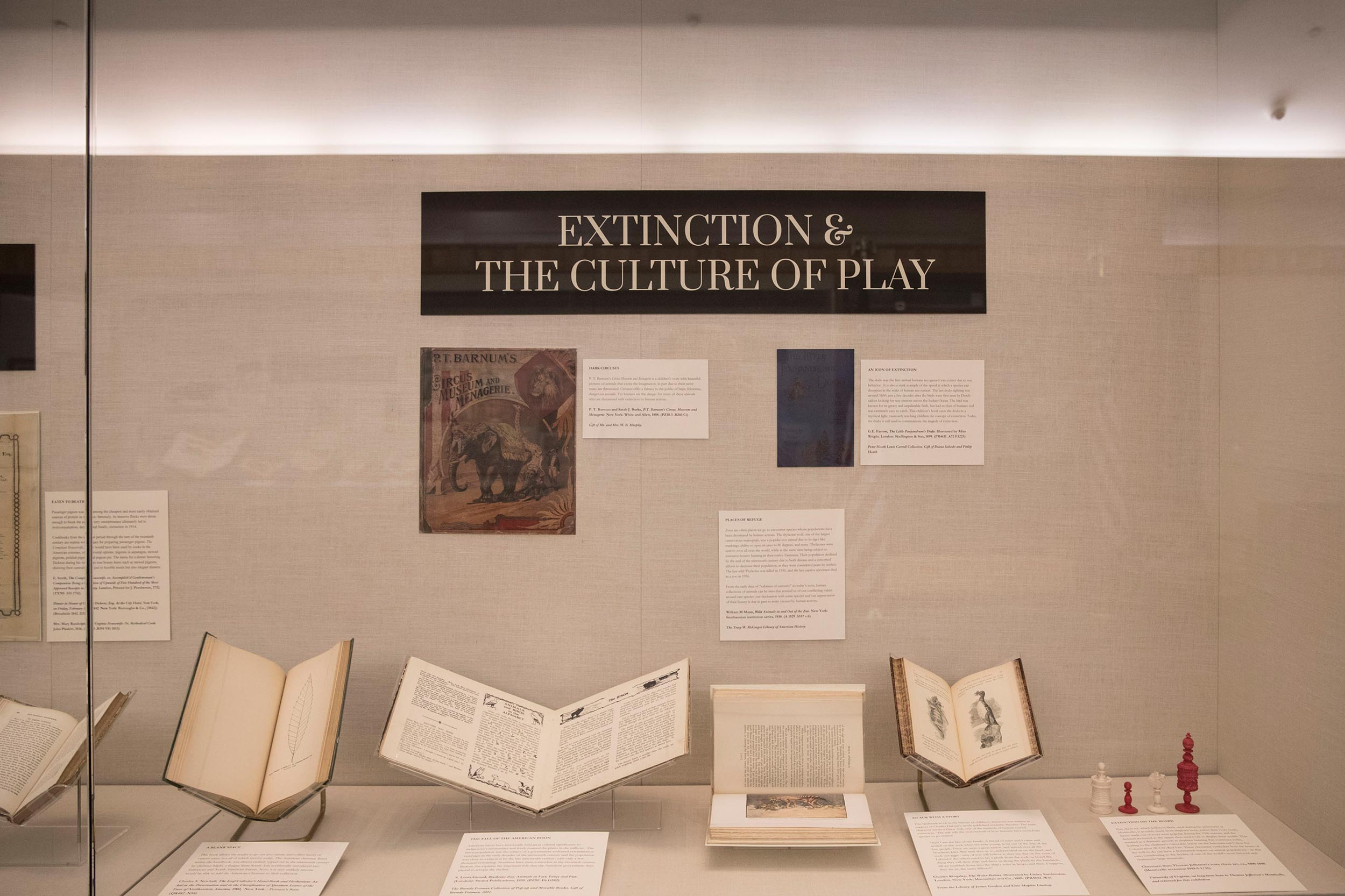 "For the ""Extinction"" exhibit, each student developed a theme, such as ""Extinction & the Culture of Play"" by Ryley Crow, and selected five to seven objects for that category."