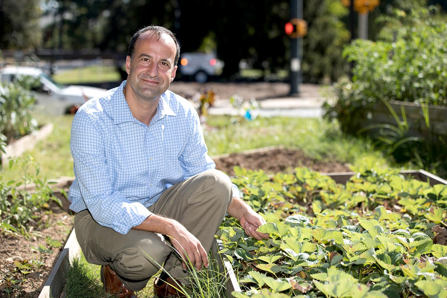 Associate economics professor Federico Ciliberto co-led the largest research study to date examining how genetically modified soybeans and maize have impacted pesticide use in the U.S.