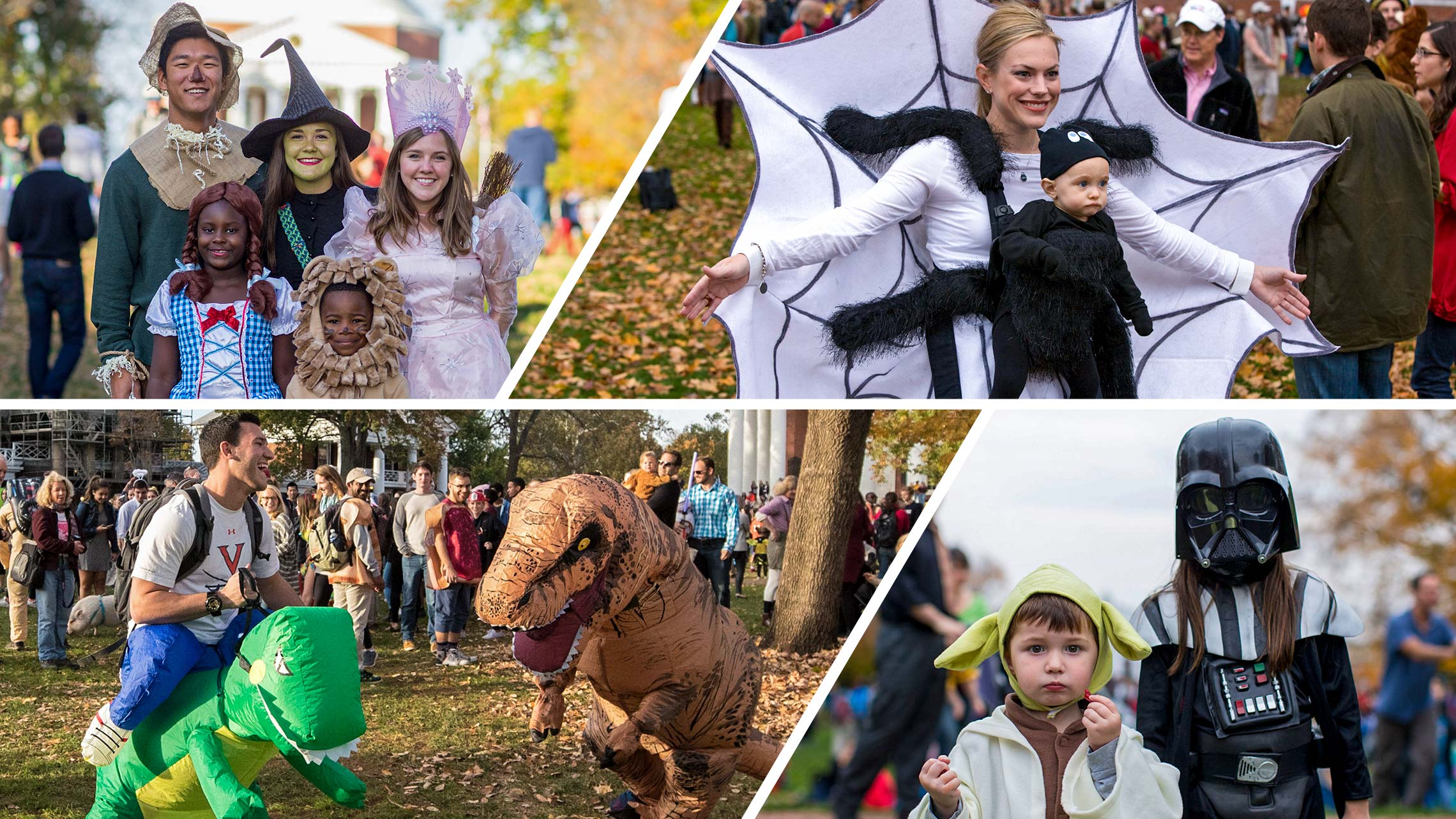 Photos of people in various Halloween costumes