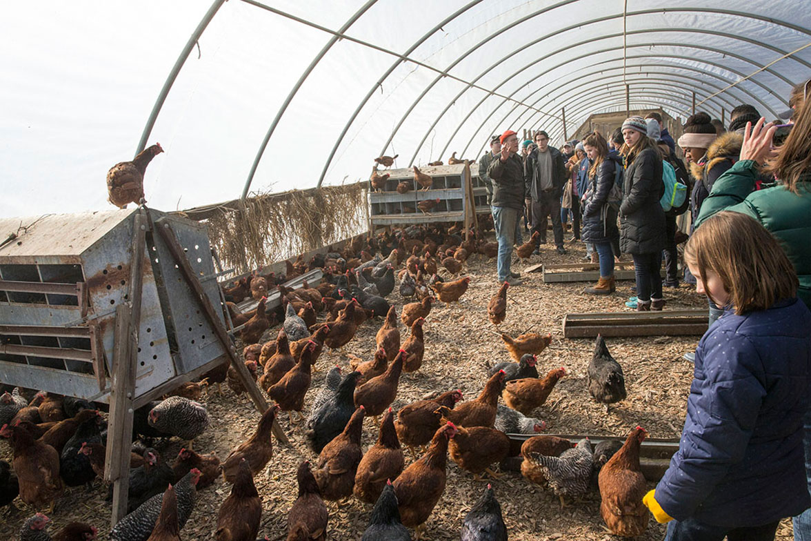 Joel Salatin, proprietor of Polyface Farm in Swope, explains to University of Virginia students how he winters his chickens in hoop houses and then when he turns them out in warmer weather he uses the hoop house, with its composted chicken manure, to grow