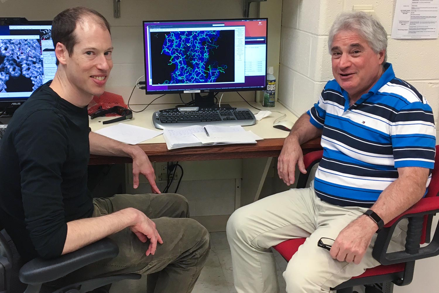 Dr. Peter M. Kasson and Edward H. Egelman of the School of Medicine observed and modeled the structure of the virus.