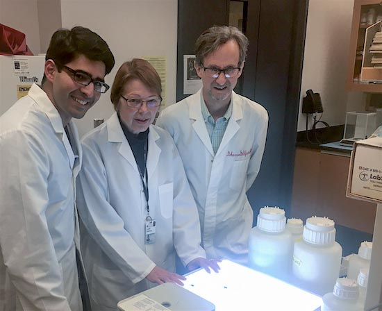 Left to right, Shadi Khalil, Lorrie Delehanty and Dr. Adam Goldfarb helped piece together the anemia puzzle.