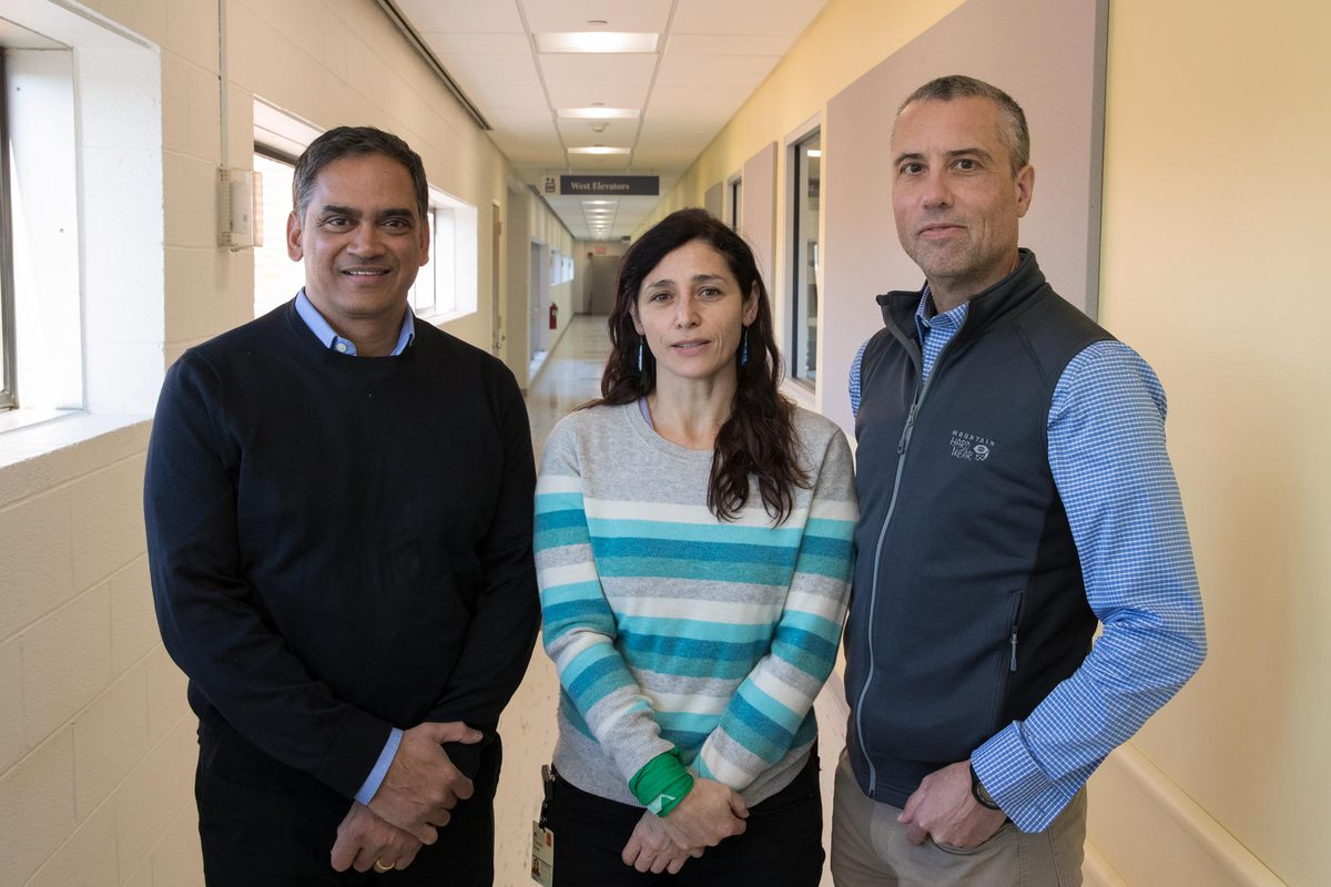 Researchers Jeffrey Lysiak, Kodi Ravichandran and Claudia Rival made a new finding that recasts the role of the egg in the fertilization process.
