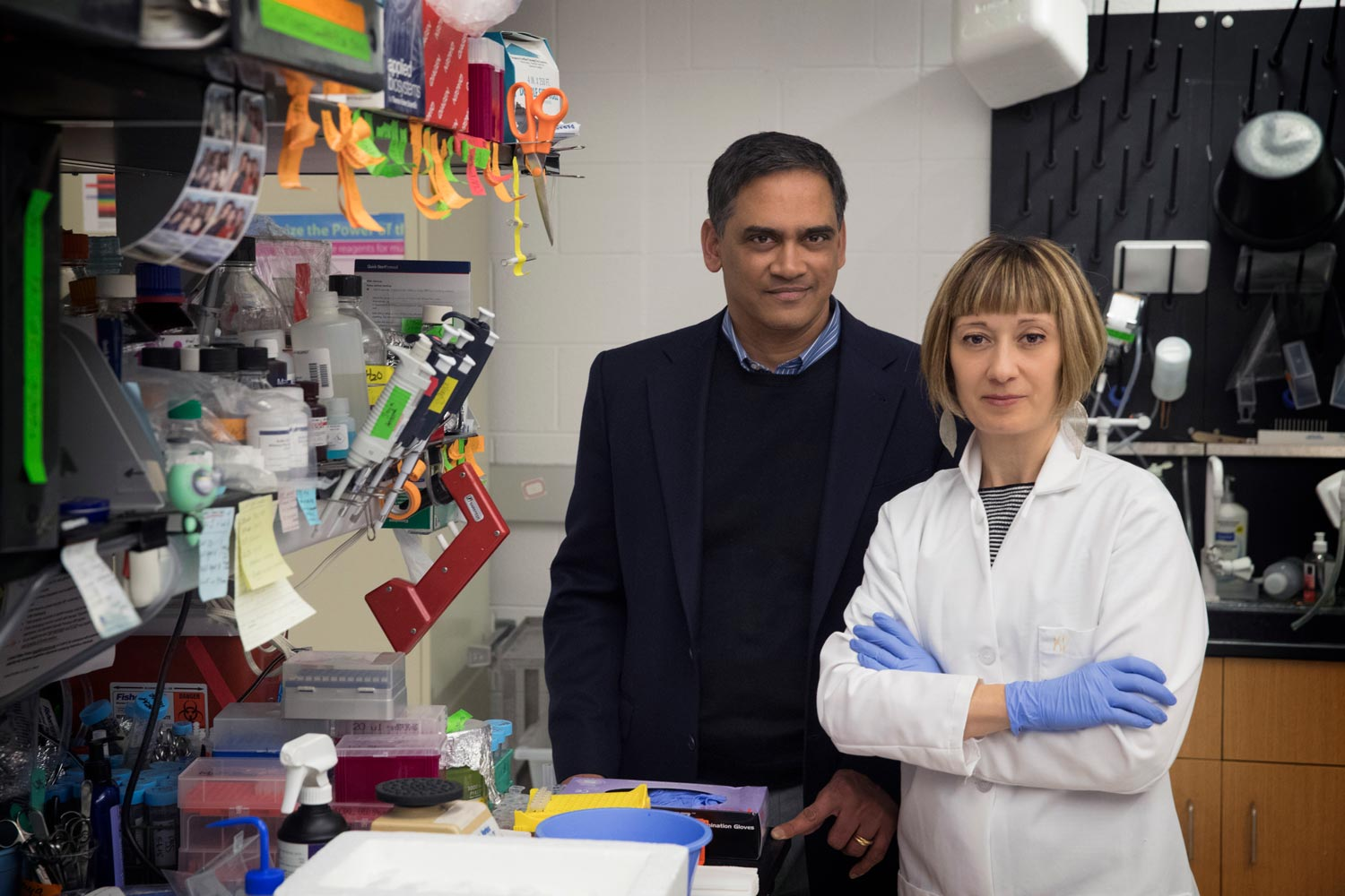 Kodi Ravichandran, left, and Sanja Arandjelovic led new research into the causes of rheumatoid arthritis flare-ups.