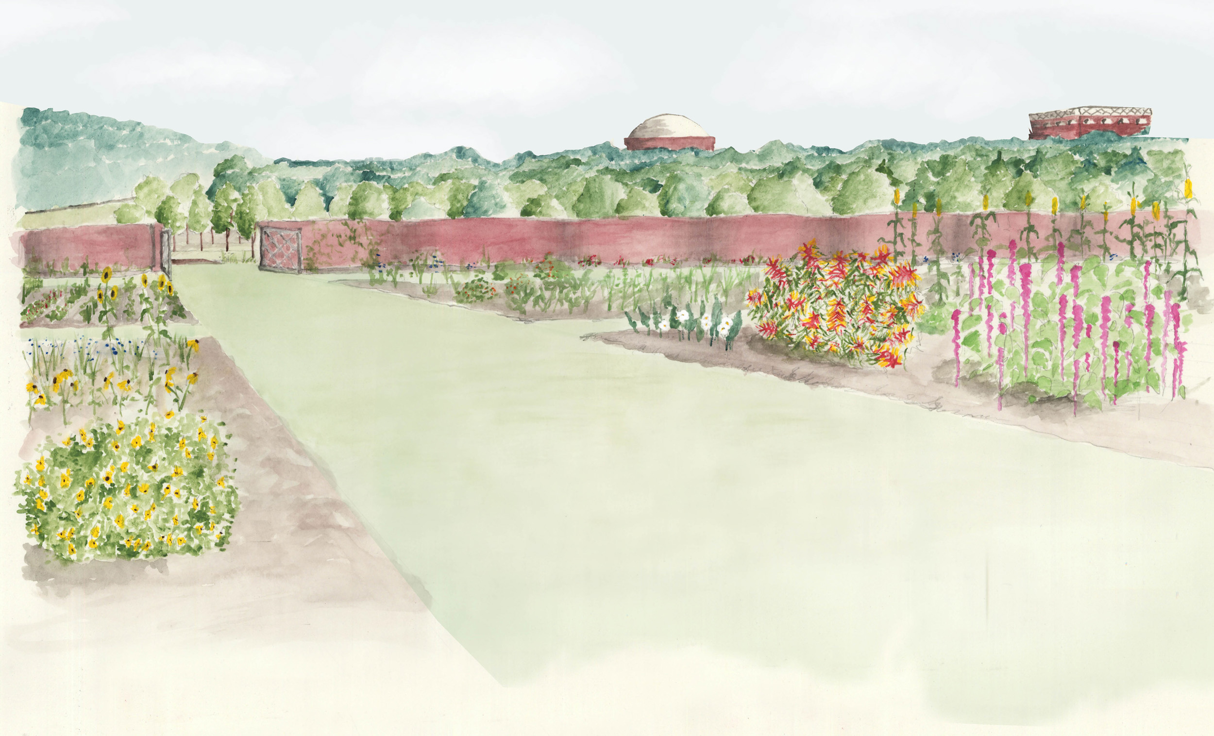 A conjectural drawing of Jefferson's botanical garden, used with permission from UVA alumna Jenny Jones, who earned a Master of Landscape Architecture degree in 2010, for fellow grad student Lily Fox-Bruguiere's 2010 master's thesis.
