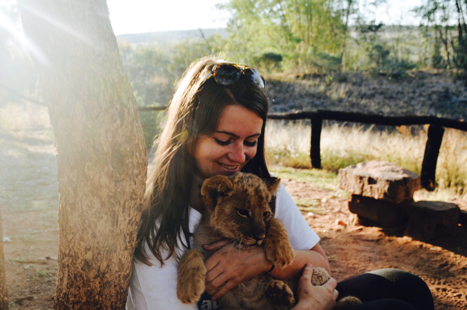 Undergraduate student Helena Gallagher with a lion cub in South Africa.