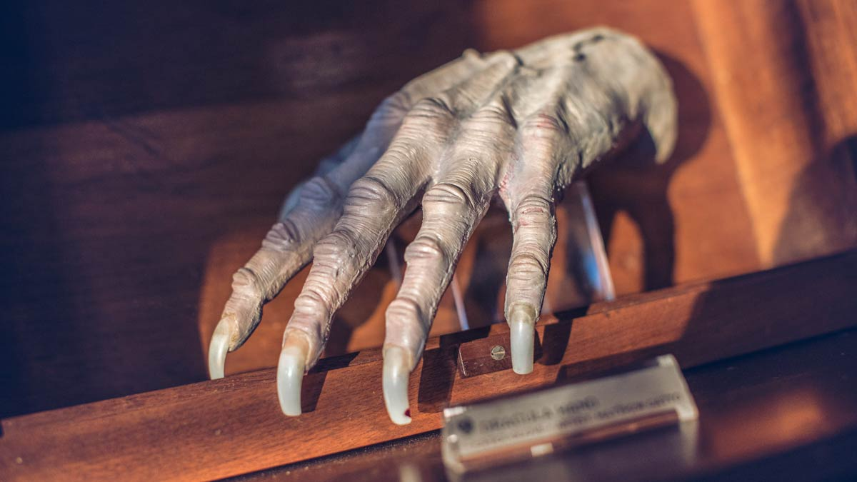 A model of a shriveled hand with long fingernails