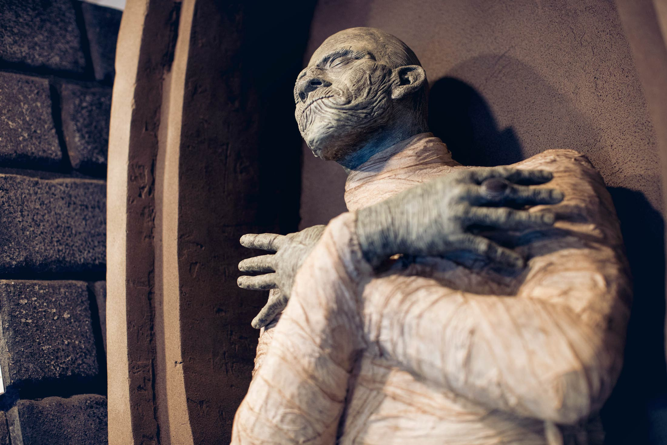A life-sized model of a mummy in a coffin