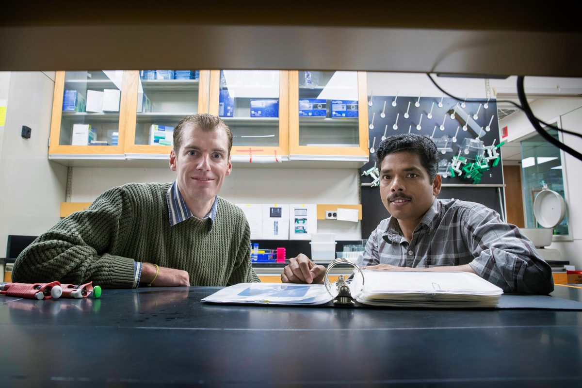 Researchers Michael J. Guertin, left, and Kizhakke Mattada Sathyan suspected a process that occurs naturally in plants could be helpful in their work.
