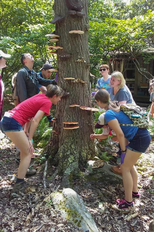 "Ph.D. alumna Amy Pedersen, middle right, with students in her summer ""Ecology of Wildlife Diseases"" course."