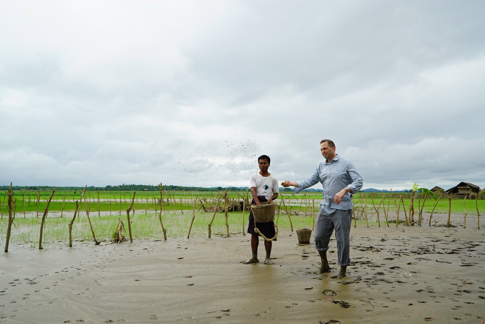 U.S. Ambassador to Burma Derek Mitchell helps a rice farmer, whose crop was destroyed in the July-August floods, to replant rice seeds. Rakhine State, Burma, August 2015.