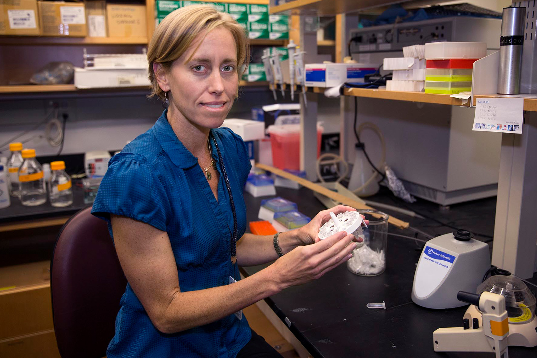 Biomedical engineering professor Shayn Peirce-Cottler models the highly complex, interconnected system of blood vessels that serve living tissue.
