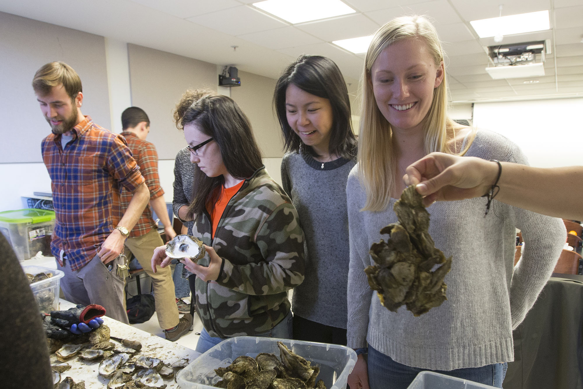 Students Nathan Rose, Kristen Eppard, Abigail Chan and Mary Collins take a look at some aquacultured oysters, brought to Stephen Macko's fisheries class.