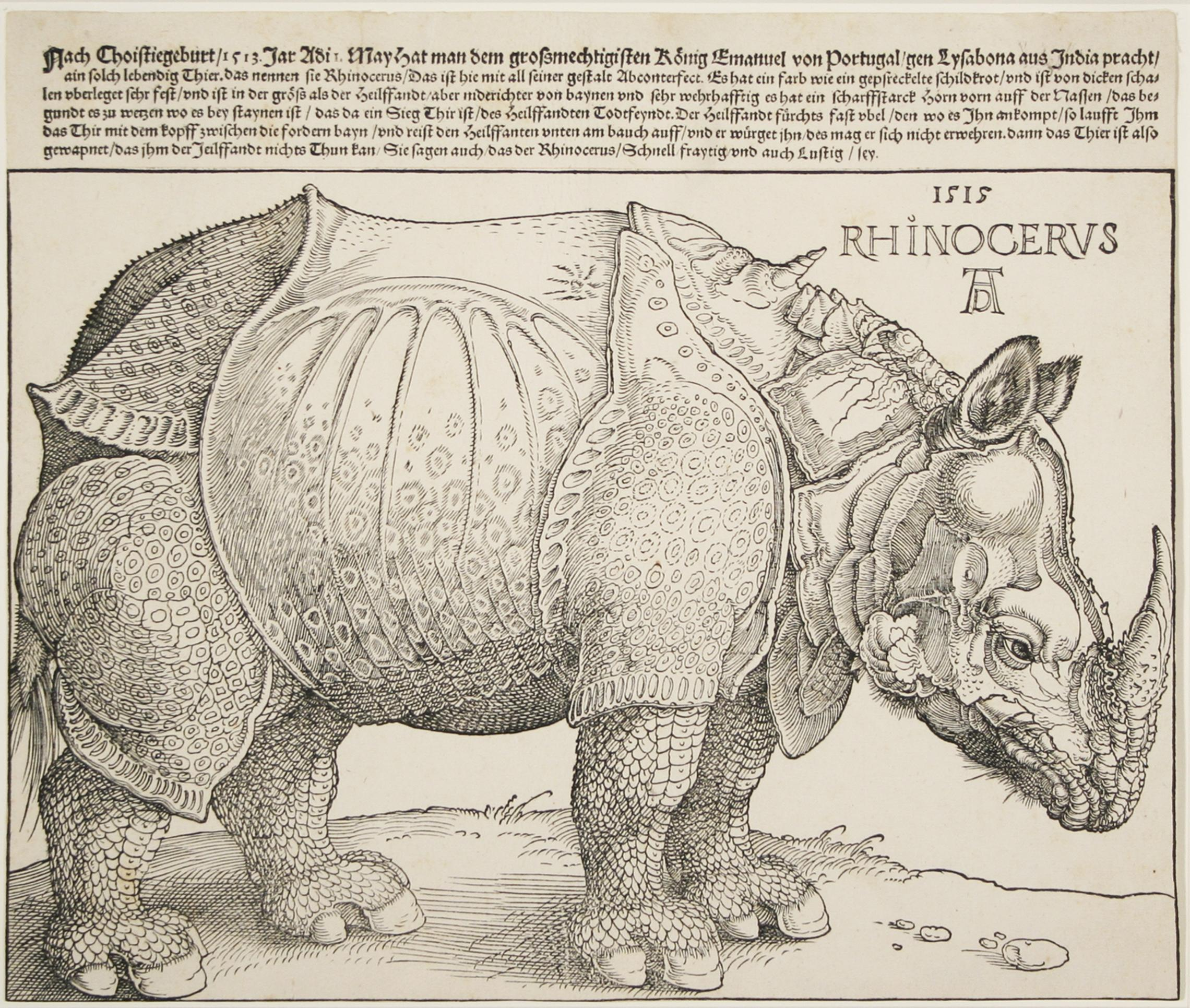 Albrecht Dürer, German, 1471-1528, Rhinoceros, 1515, third edition c.  1540-1550, Woodcut, Meder 273, 10 x 12 in, 25.4 x 30.48 cm (sheet), ...