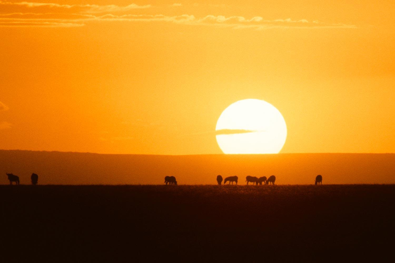 """East Africa could experience """"unbearable"""" heat by the late 21st century, a climate change projection indicates."""