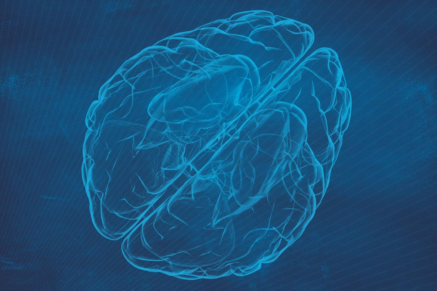 Discovery Could Let Doctors Customize Brain's Immune Response to Diseases