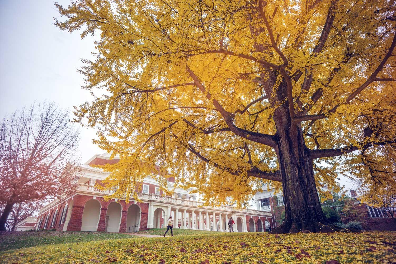 UVA Will Facilitate Governor's New Environmental Justice Advisory Council