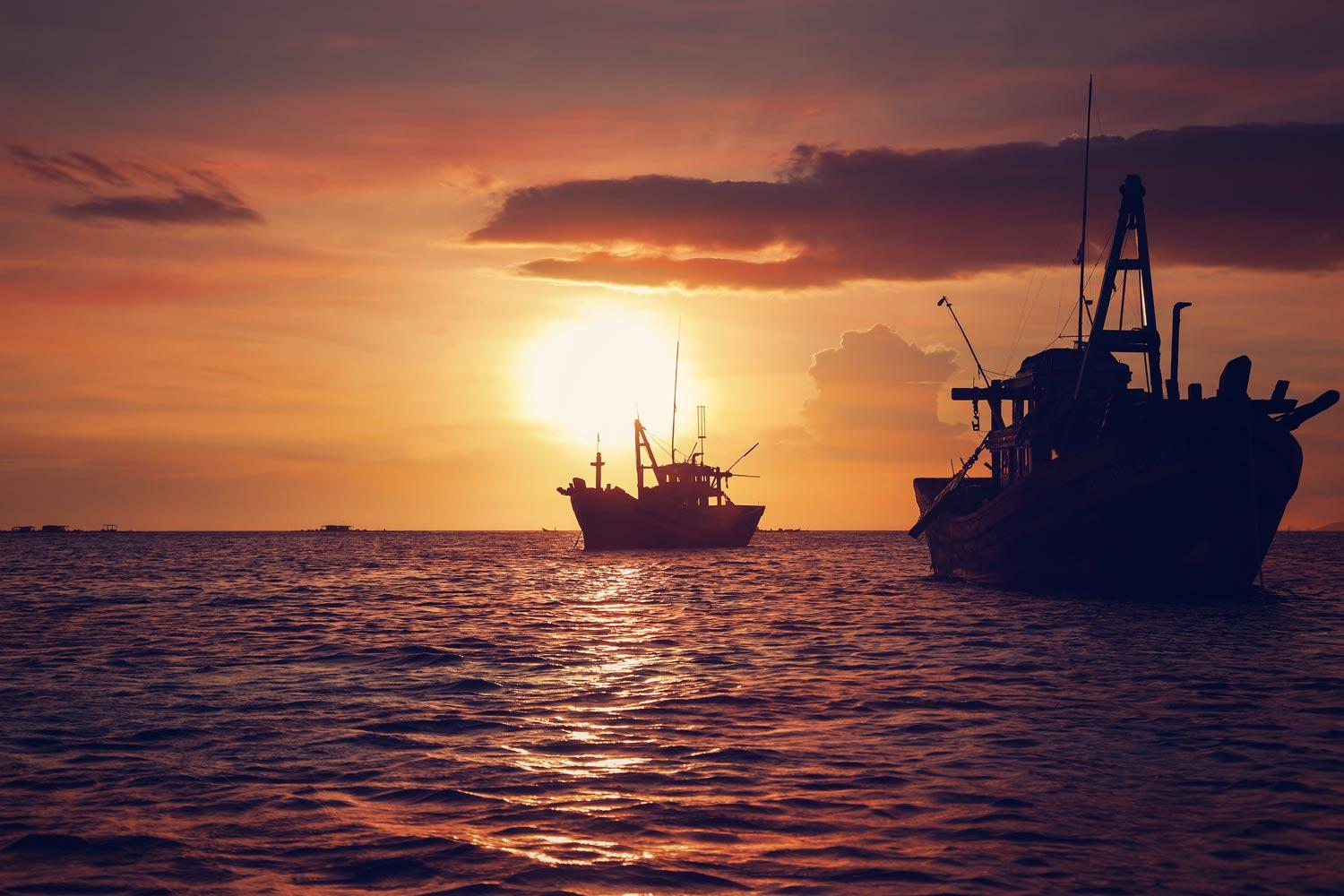 Study: Global Fisheries to Decline 20 Percent, on Average, by 2300