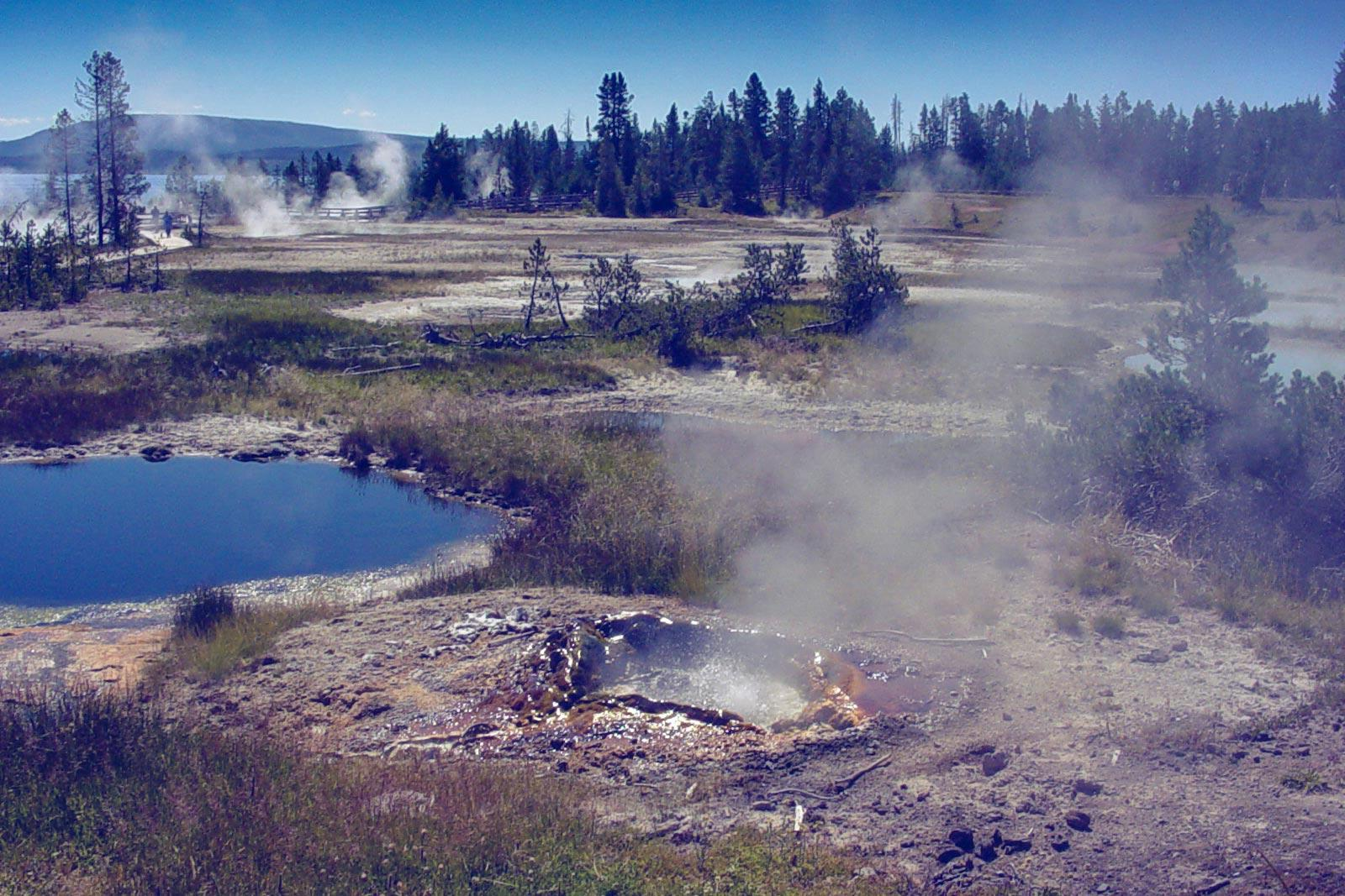 The super virus, Acidianus hospitalis Filamentous Virus 1, was first isolated in the hot springs at Yellowstone National Park.