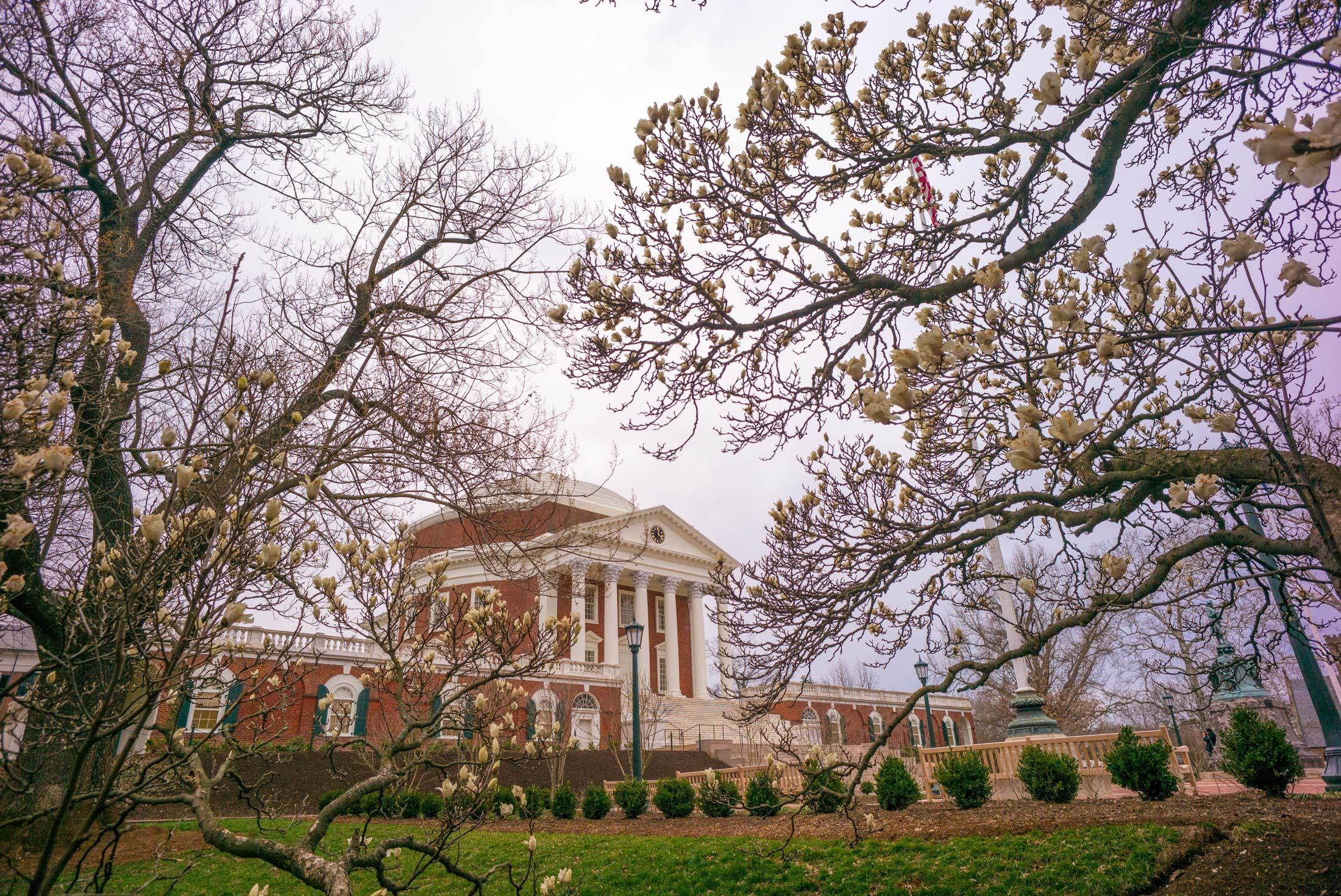 Accolades: Jefferson Scholars Foundation Awards $25,000 to Five Faculty Members
