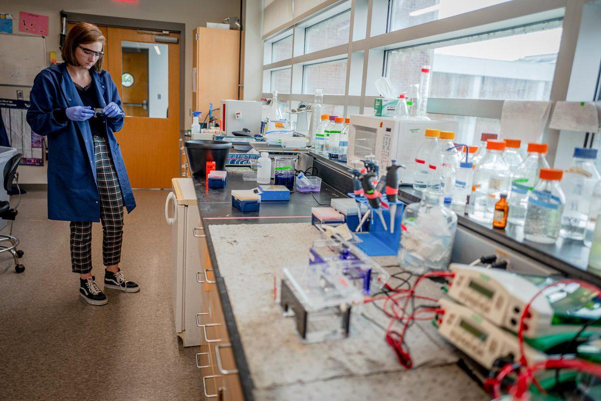 In UVA chemical engineering professor Bryan Berger's lab, Ph.D. student Madison Mann researches ways to remove toxic chemicals from air, soil and water.