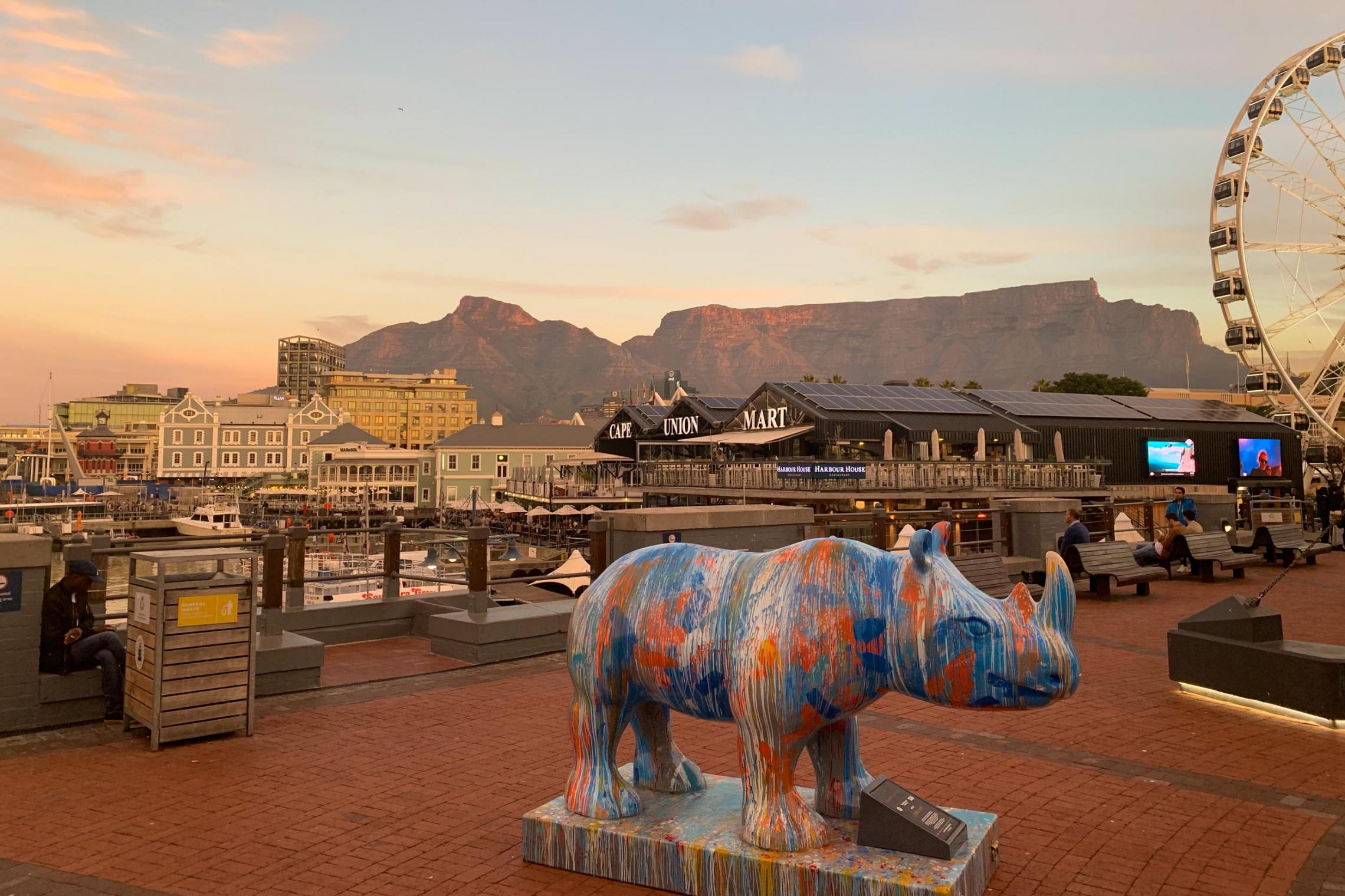 Cape Town, South Africa, is home to one of this summer's many education abroad programs.