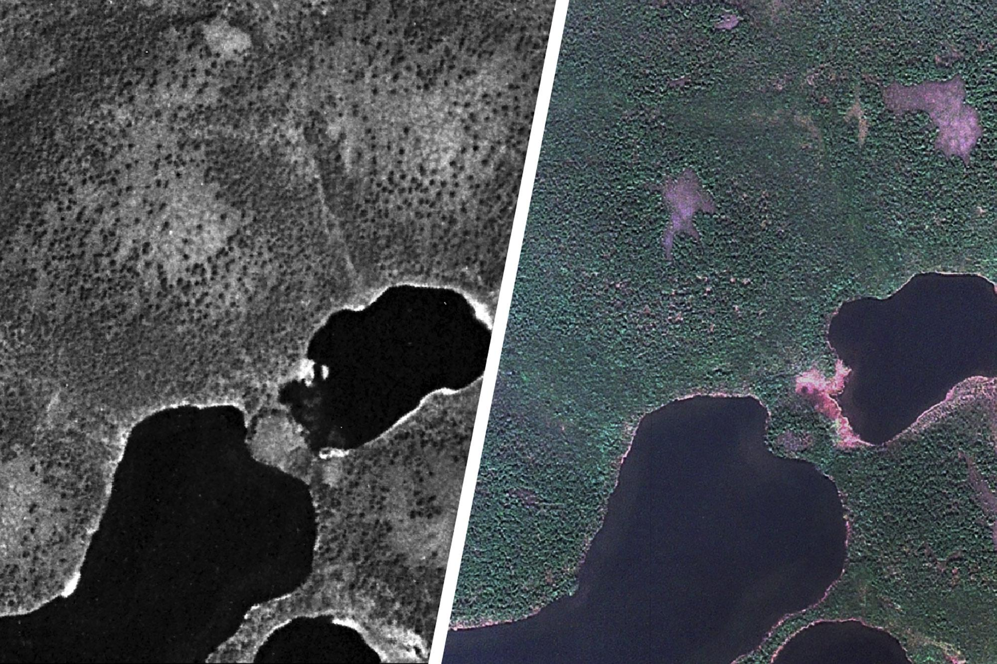 A July 1966 U.S. spy satellite photo of Arctic tundra in the western Taymyr Peninsula and a July 2009 commercial satellite image of the same location shows considerable expansion of vegetation during the 43-year interval.